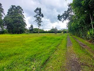 Una vista de un campo herboso con árboles en el fondo en Lote en Venta LLANO GRANDE