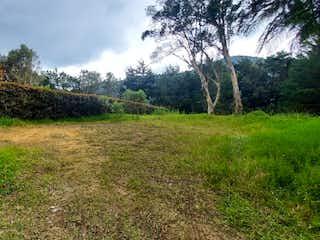 Una vista de un campo con árboles en el fondo en Lote en Venta LLANO GRANDE