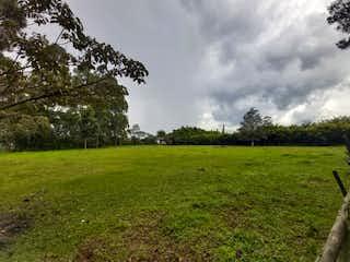 Una vista de un campo herboso con árboles en el fondo en Lote en Venta RIONEGRO