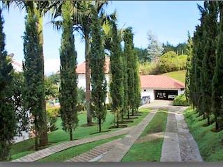 Una fila de árboles alineados en una acera en Venta Casa Campestre Medellín Poblado vía Las Palmas