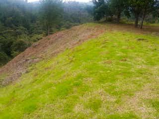 Un exuberante campo verde con una montaña en el fondo en Lote en venta en Loma del Escobero de 1786mts