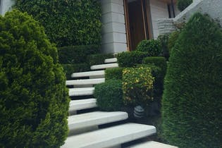 Casa en venta en Fuentes del Pedregal, 500 m² con jardín y patio
