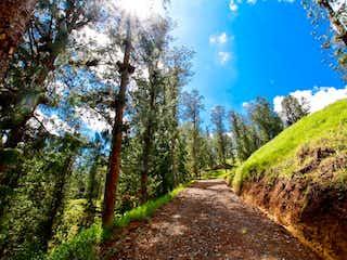 Una vista de un bosque con una montaña en el fondo en Lote en venta en Santa Helena de 3629m²