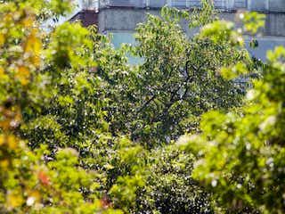Un avión está volando sobre un pequeño jardín en Apartamento En Venta En Bogotá Pontevedra