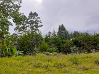 Lote en Venta La Ceja Antioquia
