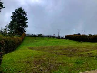 Un exuberante campo verde junto a un exuberante campo verde en LOTE PARA LA VENTA ENVIGADO, ALTO DE LAS PALMAS