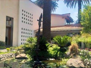 Una planta en maceta sentada delante de un edificio en Casa en Condominio La Rosaleda / San Ángel