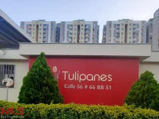 Parque Residencial Tulipanes