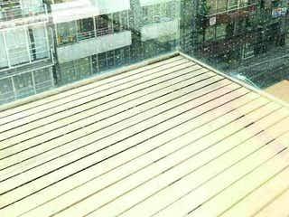 Polanco, Excelente departamento con balcón, en venta