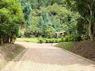 Un camino que tiene un montón de animales en él en Lote En Tiquiza, Chia- 3849m2.