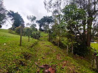 Venta de Lote Pontezuela, Rionegro