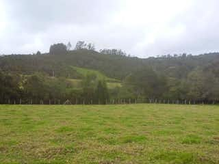 Un campo de hierba con árboles en el fondo en Lote En Chia - Vereda Yerbabuena, con 4266m2