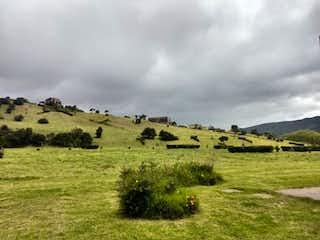 Un rebaño de animales pastando en un exuberante campo verde en -