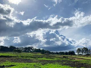 Una vista de un campo herboso con un fondo de cielo en Lote en Alto de las Palmas, Envigado - 221129mt