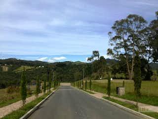 Una vista de un camino con una calle en el fondo en Bramasole