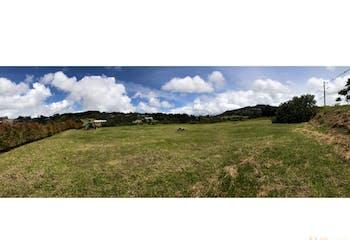 Lote en Balmoral, Alto de las palmas con hermosa vista - 2513mt2.
