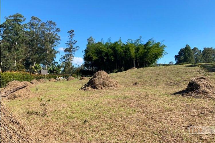 Foto 3 de Lote en LlanoGrande, Rionegro - 3333mt