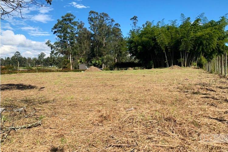 Foto 5 de Lote en LlanoGrande, Rionegro - 3333mt