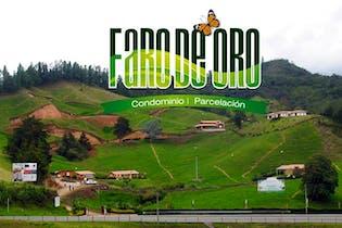 Faro de Oro s, Lotes en venta en La Milagrosa con 2500m²