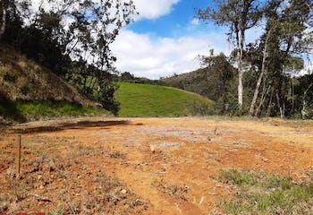 Lote 2500 mts2-Ubicado en el Oriente Antioqueño-Faro de Oro.