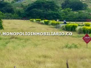 Un campo con un montón de animales en él en HACIENDA SANTA FE